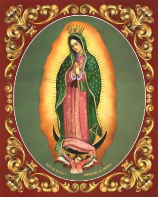 Virgem de Guadalupe2
