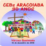 CEBS_T